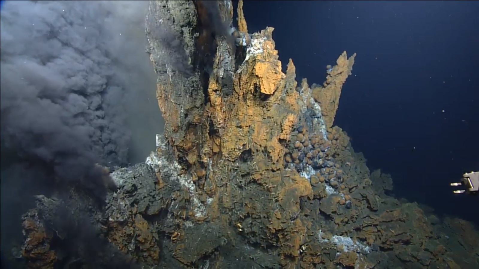 image of hydrothermal vents